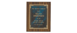 CSU Green Award Plaques